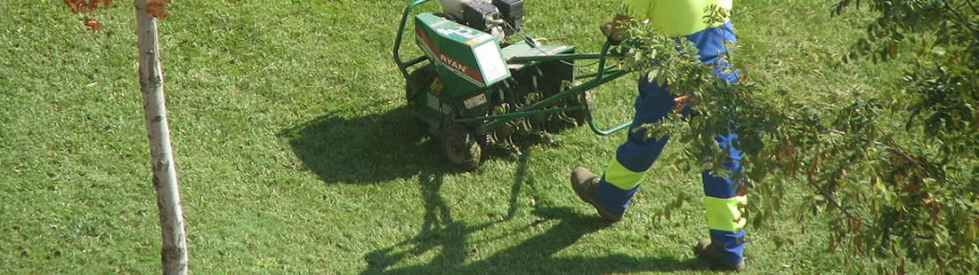 Shorewood Lawn Aeration Services Illinois