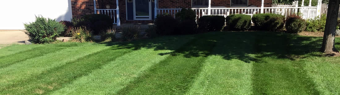 Lawn Care Service Packages Illinois