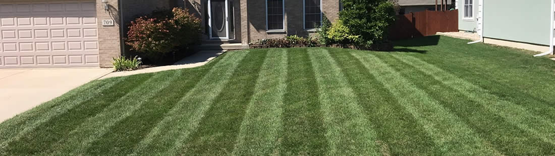 Coal City Lawn Seeding and Fertilization Services Illinois