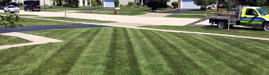Local Lawn Care Professionals near me Illinois