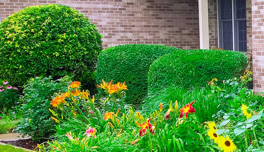 Landscaping and Mulch Installation Services Illinois